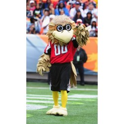 Atlanta Falcons Mascot Costume