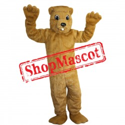 High Quality Groundhog Mascot Costume