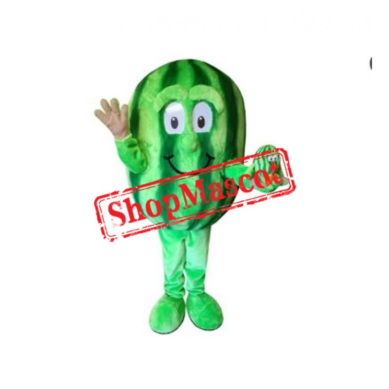 Happy Watermelon Mascot Costume