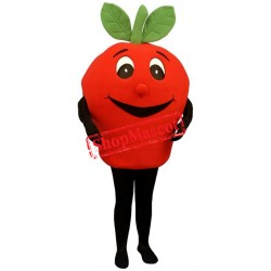 Cute Red Apple Mascot Costume