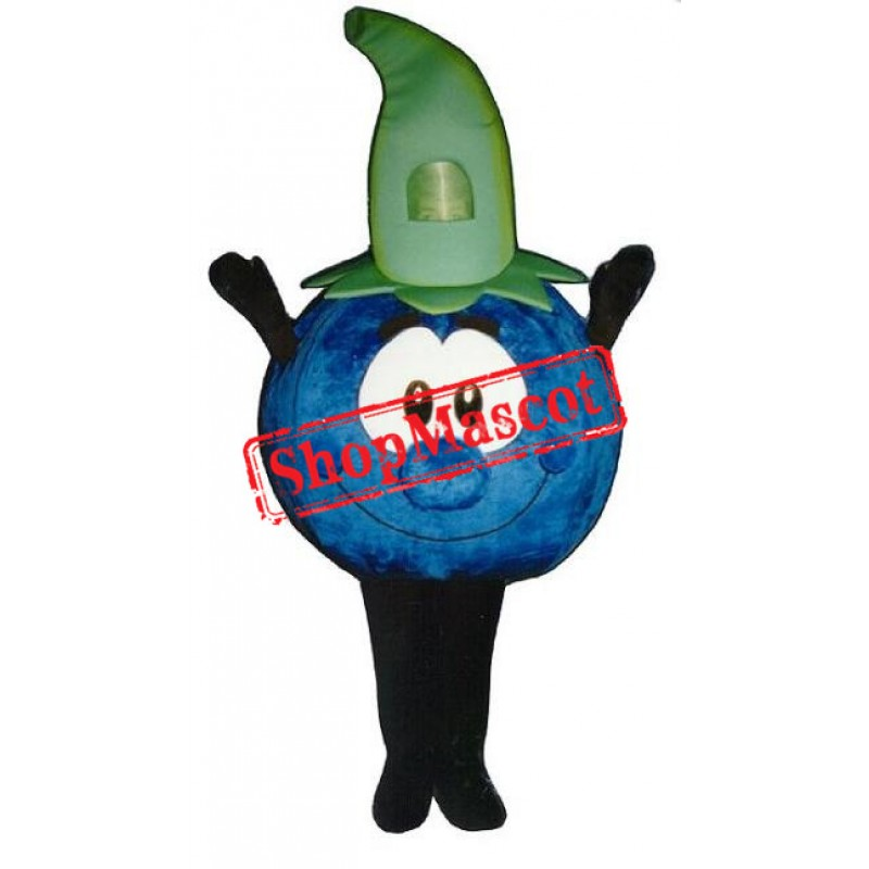Cute Blueberry Mascot Costume