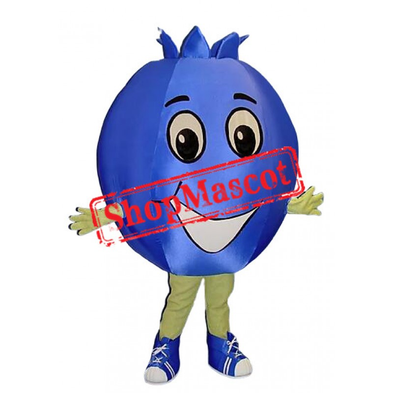 Top Quality Blueberry Mascot Costume