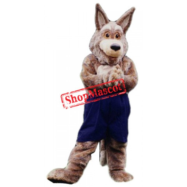Top Quality Coyote Mascot Costume