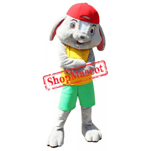 Sport College Rabbit Mascot Costume