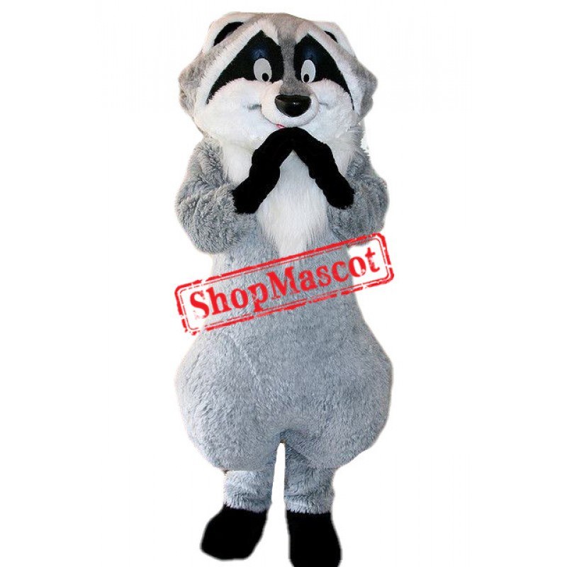 Lovely Raccoon Mascot Costume