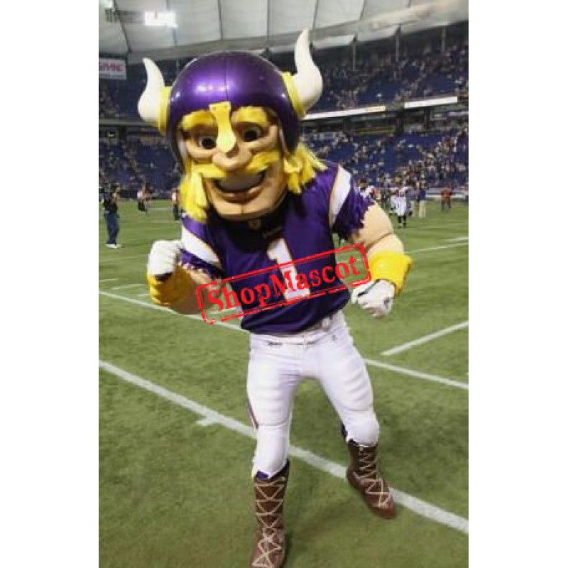 Football Viking Mascot Costume