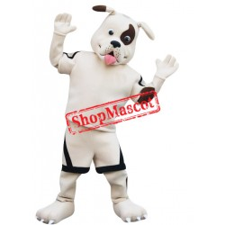 Cute Pirate Dog Mascot Costume