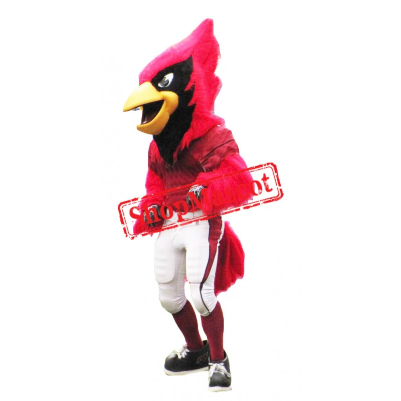 Sport Fierce Cardinal Bird Mascot Costume