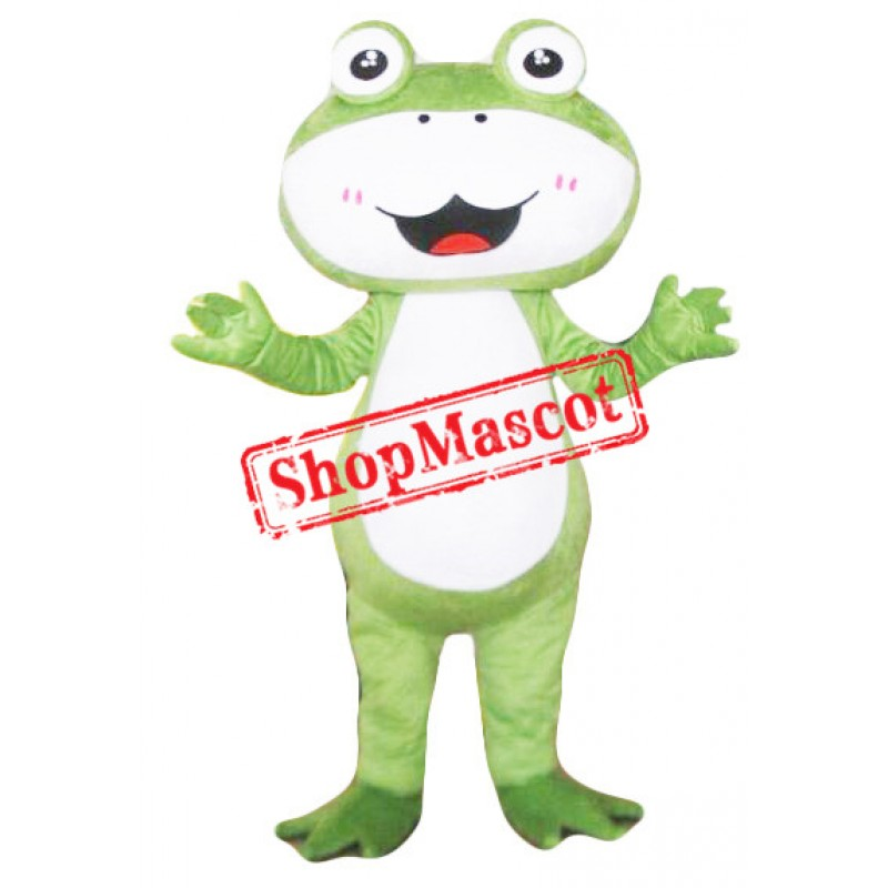 Lovely Big Frog Mascot Costume