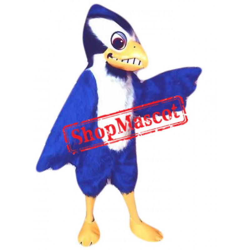 Friendly Blue Jay Mascot Costume