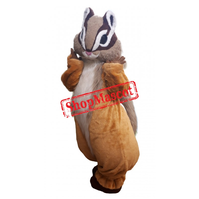 Superb Lovely Squirrel Mascot Costume