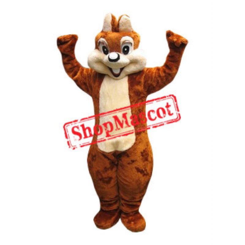 Affordable Friendly Squirrel Mascot Costume