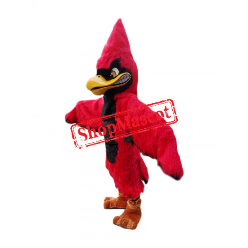 Superb Red Jay Mascot Costume