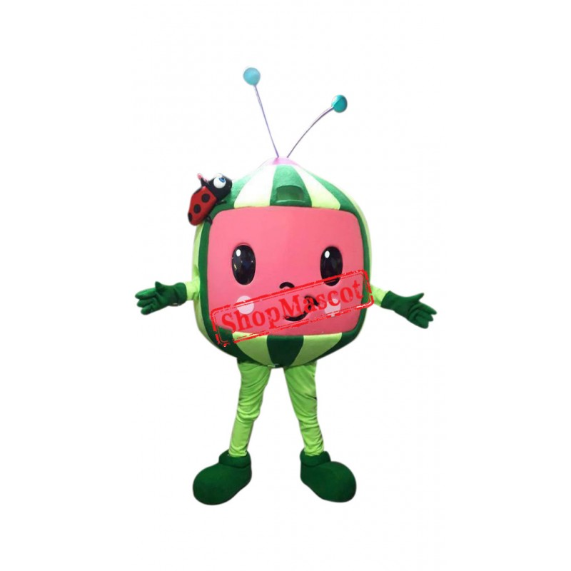 Cocomelon Watermelon Fruit  Mascot Costume