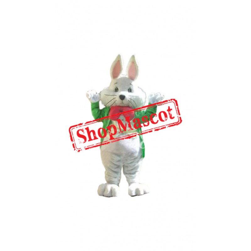 Superb Friendly Rabbit Mascot Costume