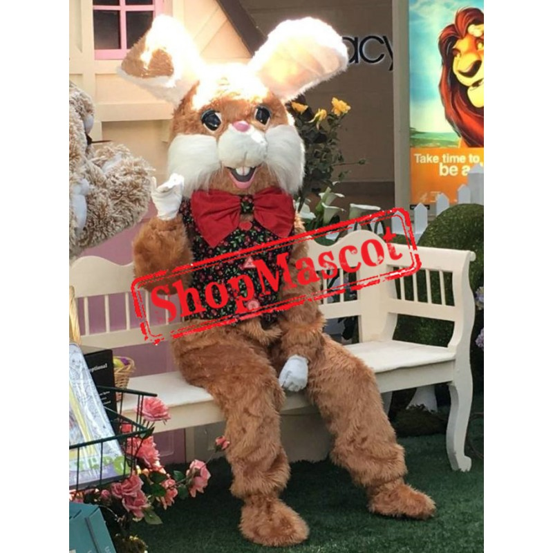 Friendly Easter Bunny Mascot Costume