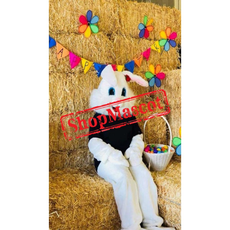 Young Easter Bunny Mascot Costume