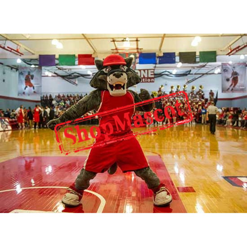 Superb College Sport Wolf Mascot Costume