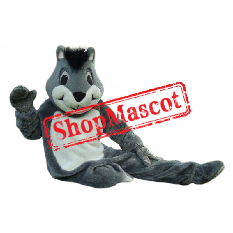 Superb Friendly Squirrel Mascot Costume