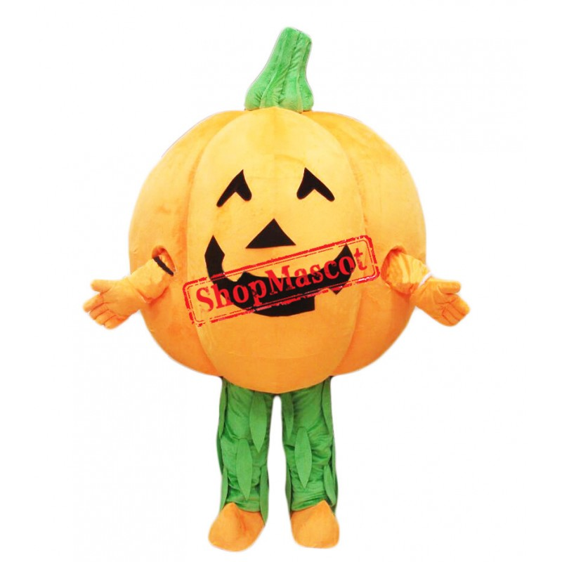 Cheap Pumpkin Mascot Costume