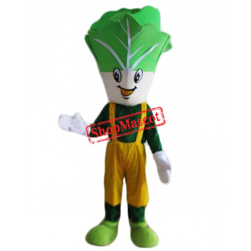 Cheap Cabbage Mascot Costume