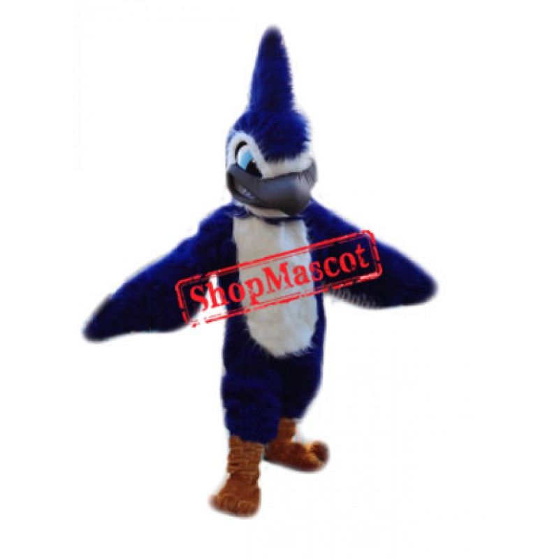 Top Quality Lightweight Blue Jay Mascot Costume