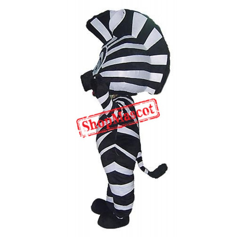 Little Zebra Mascot Costume