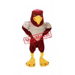 Power Falcon Mascot Costume