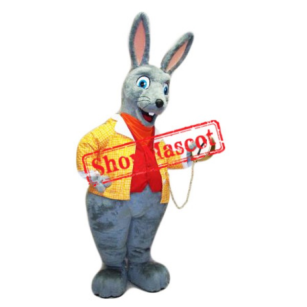 Top Quality Easter Rabbit Mascot Costume