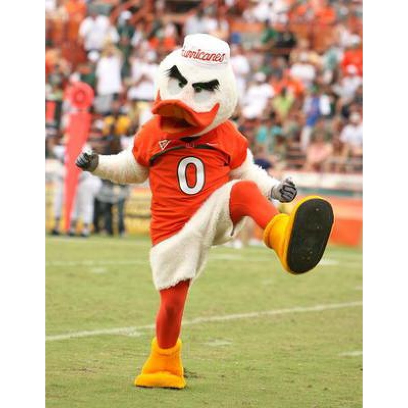 University of Miami Hurricanes Mascot Costume