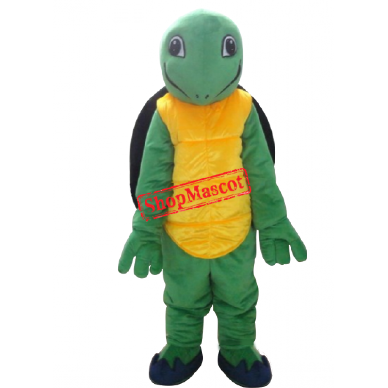 Hot Sale Turtle Mascot Costumes Tortoise Mascot