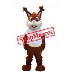 Super Cute Lightweight Squirrel Mascot Costume