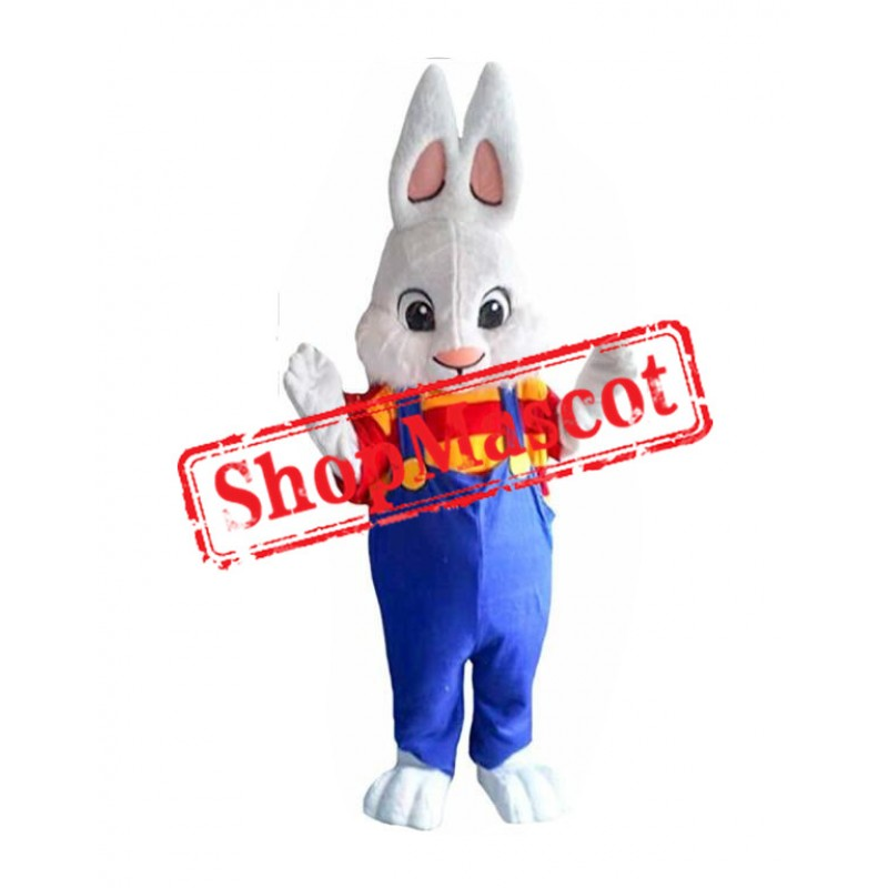 Easter Boy Bunny Mascot Costume