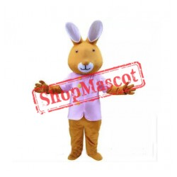 Rabbit Cartoon Mascot Costume