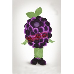 Top Quality Grape Mascot Costume