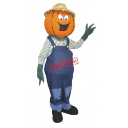 Mr Pumpkin Mascot Costume