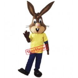 Friendly Lightweight Rabbit Mascot Costume