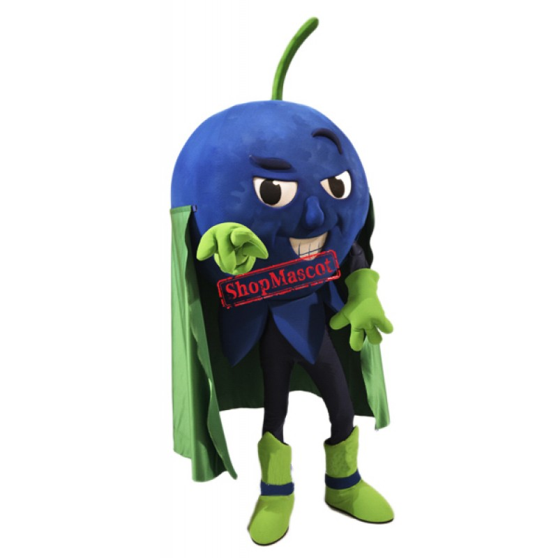 High Quality Blueberry Mascot Costume