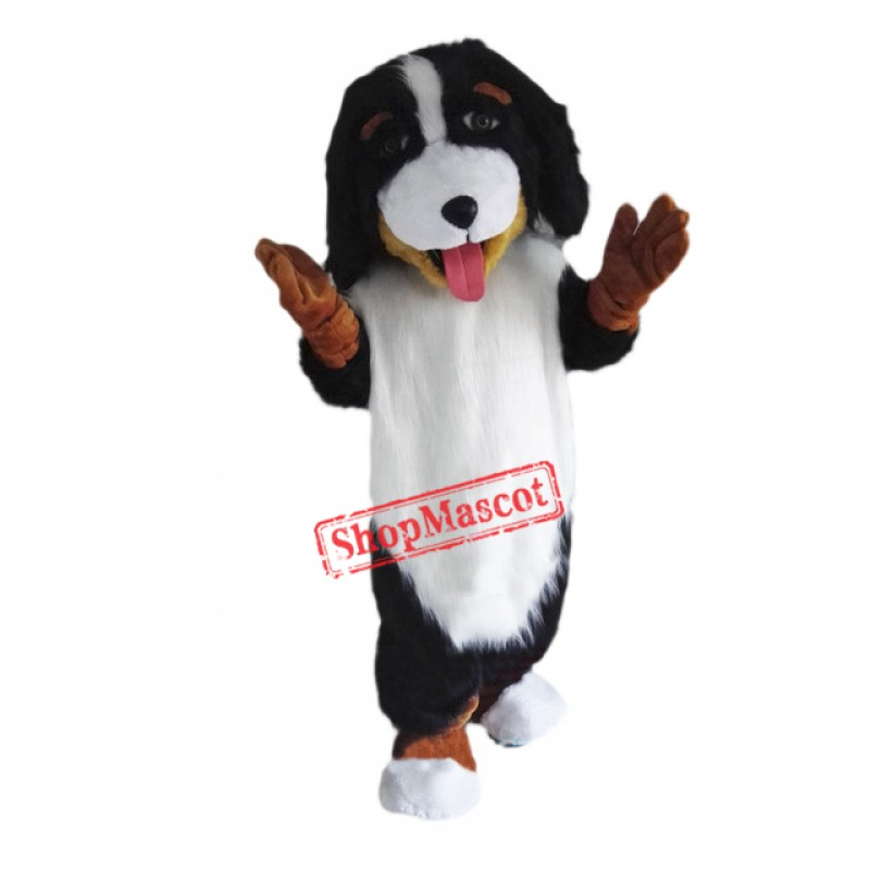 Bernese Mountain Dog Mascot Costume