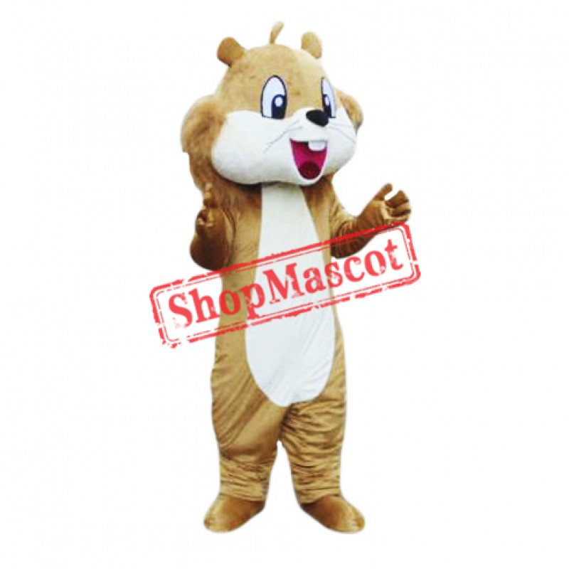 Friendly Adult Squirrel Mascot Costume