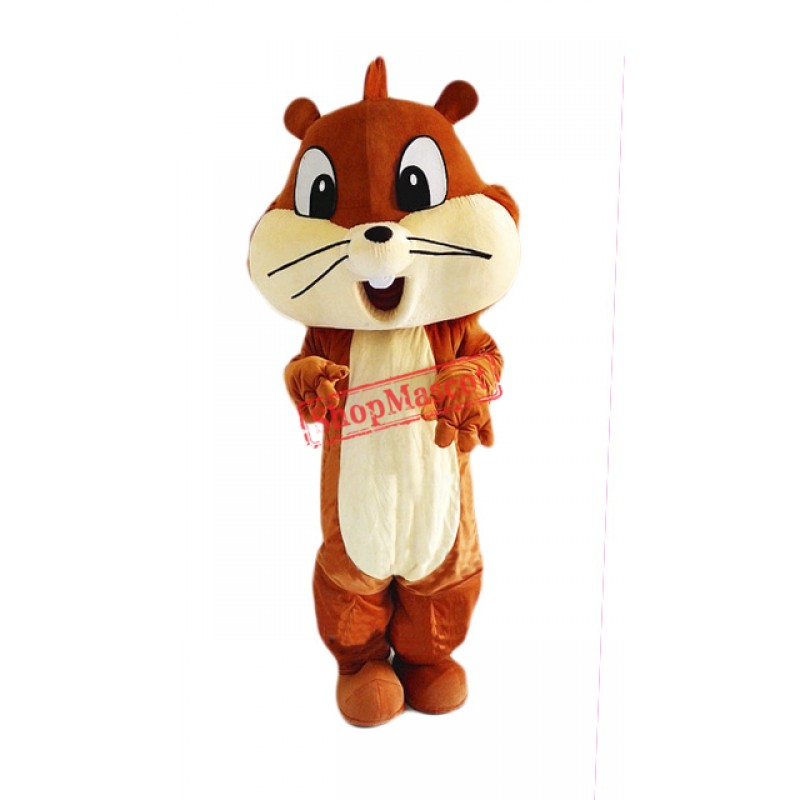 Little Cute Squirrel Mascot Costume