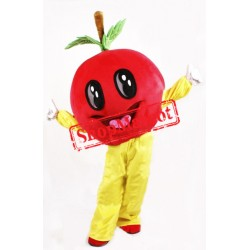 Cheap Red Apple Mascot Costume