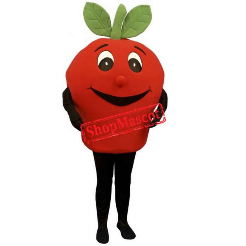 Happy Lightweight Red Apple Mascot Costume