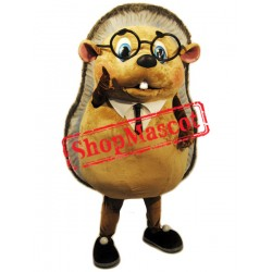 Cute Lightweight Hedgehog Mascot Costume