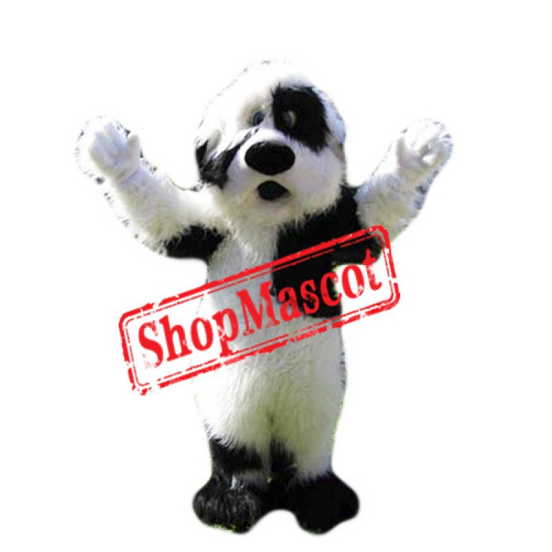 Friendly Black&White Dog Mascot Costume