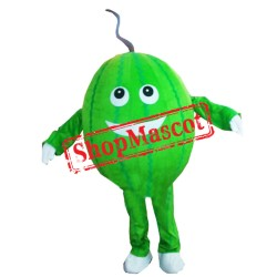 Cheap Watermelon Mascot Costume