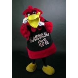 University of South Carolia Mascot Costume Cocky Costume