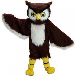 Owl Mascot Costume Free Shipping