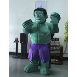 Hulk The Avengers Mascot Costumes