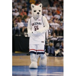 The Sports Husky Dog Mascot Costume